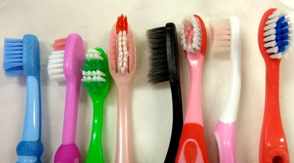 Escovas de dente usadas foram analisadas na pesquisa feita em Campinas (Foto: Patrícia Teixeira/G1)