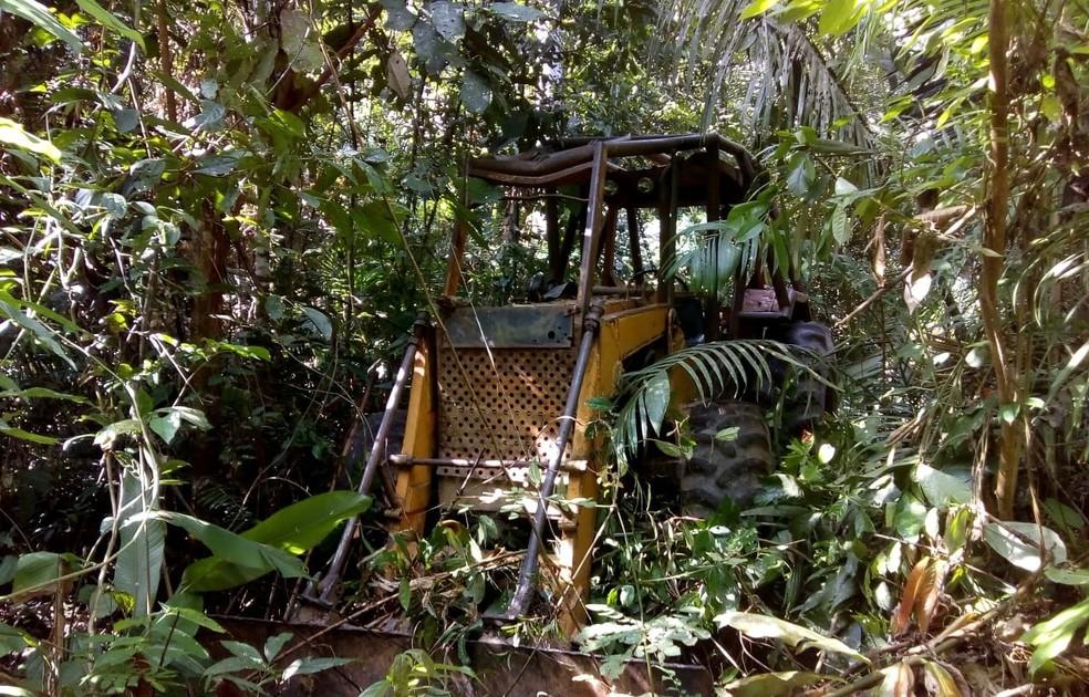 Ibama apreende trator em área desmatada ilegalmente — Foto: Ibama