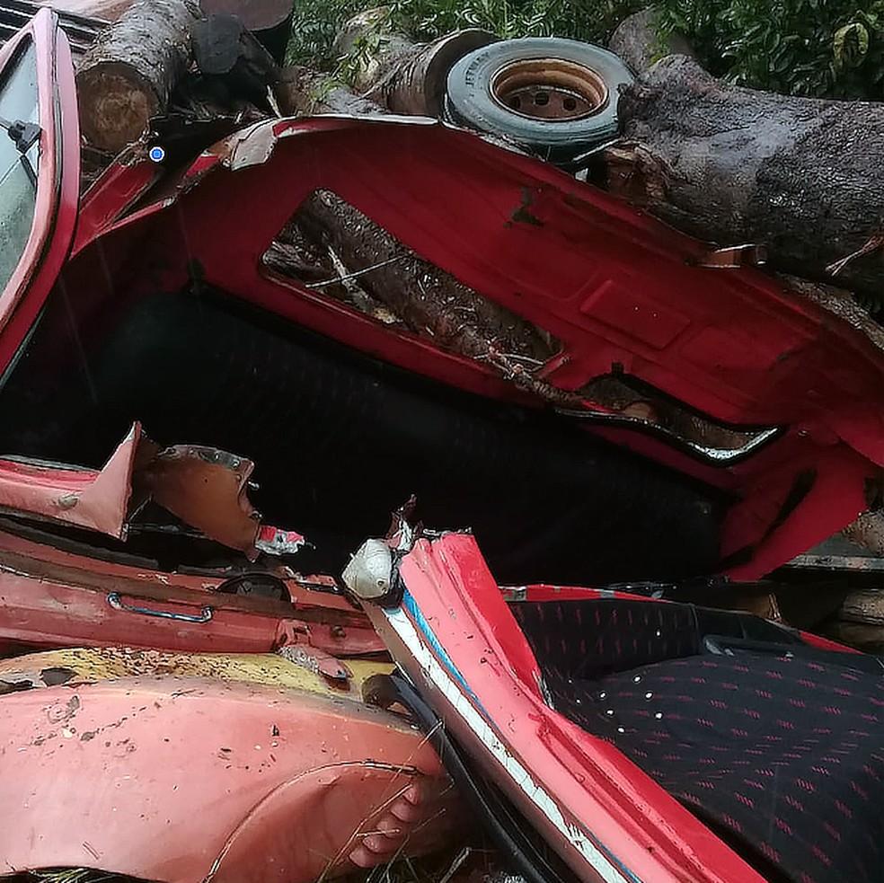 Motorista morre esmagado por toras em acidente com caminhão em Cláudia — Foto: Divulgação