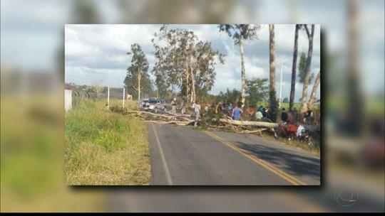 Mulher morre ao reconhecer corpo de sogro atingido por queda de árvore na PB