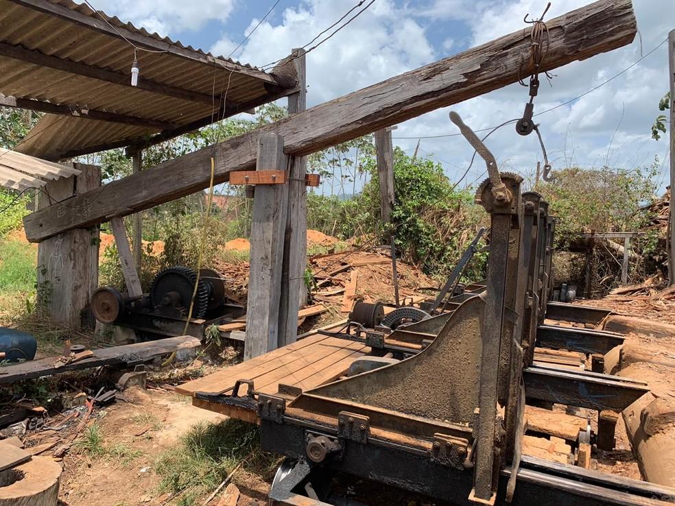 Durante a operação três serrarias de grande porte foram interditadas  — Foto: Divulgação/Polícia Federal