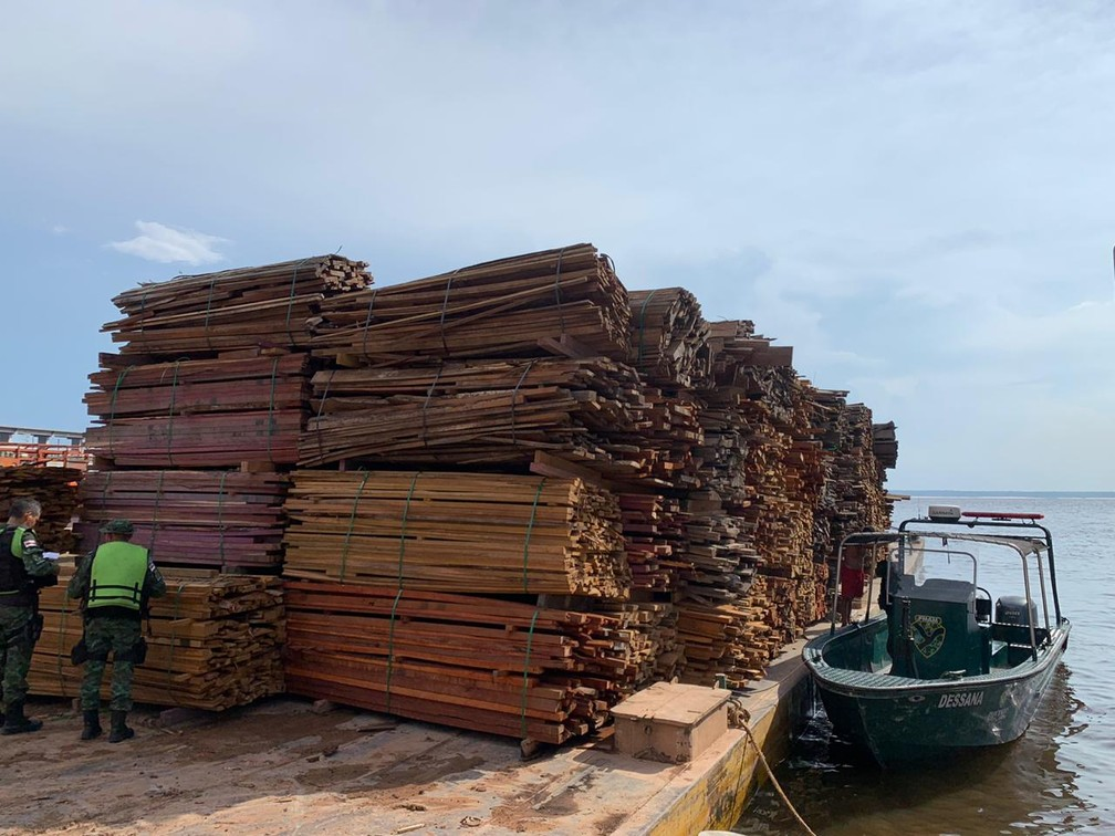 Batalhão Ambiental atua para apreensão de madeira ilegal no Amazonas. — Foto: Divulgação/PM-AM