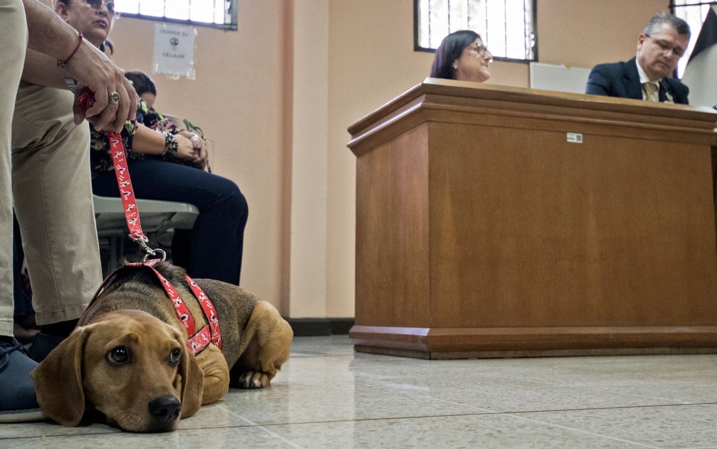 Campeão é visto durante sessão da corte em Atenas, na Costa Rica, na segunda-feira (22) — Foto: Ezequiel Becerra/AFP