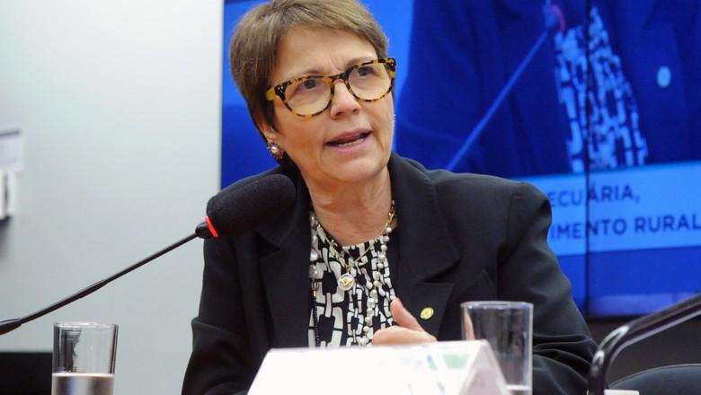 A deputada Tereza Cristina (DEM-MS), que assumirá a presidência da Frente Parlamentar da Agropecuária (Foto: Luis Macedo/Câmara dos Deputados)