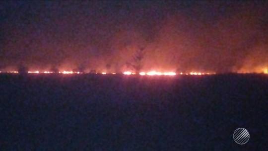 Incêndio atinge extensão de 4,5 km de vegetação em Maraú, sul da Bahia
