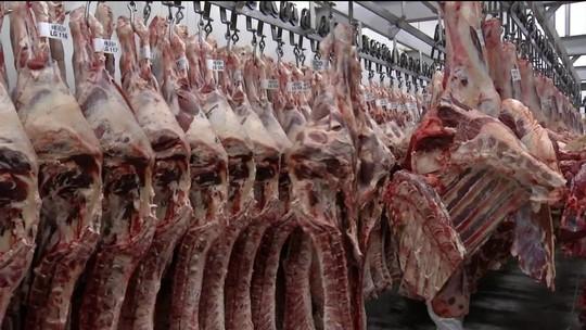 Campo ainda sente prejuízos do embargo da carne bovina, dizem criadores