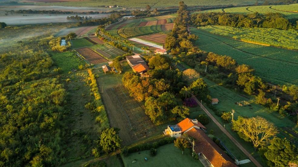 O Sítio A Boa Terra, do holandês Joop Stoltenborg, é o sétimo certificado como orgânico no Brasil (Foto: Sítio A Boa Terra)