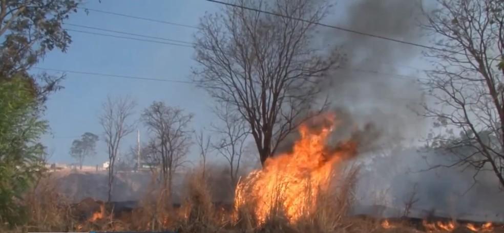 Incêndio atingiu vegetação da Serra do Mimo, no oeste da Bahia — Foto: Reprodução/TV Bahia