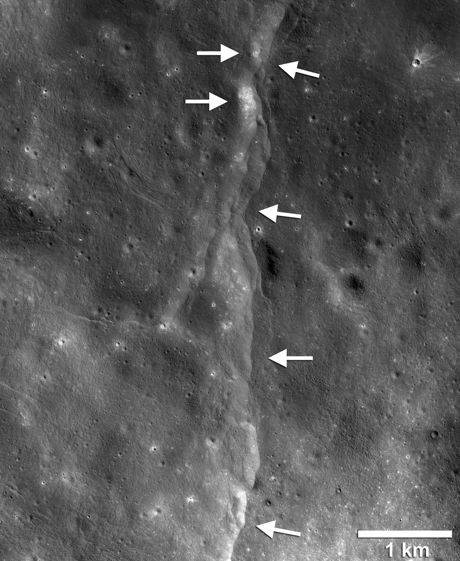 Esta proeminente escarpa de falha de impulso do lóbulo lunar é uma das milhares de imagens descobertas nas imagens Lunar Reconnaissance Orbiter Camera (LROC). A falha escarpada ou escarpada é como um degrau na paisagem lunar (setas brancas apontando para a esquerda) formadas quando a crosta próxima da superfície é empurrada, quebrada e empurrada para cima ao longo de uma falha quando a Lua se contrai. Campos de pedregulhos, trechos de solo relativamente alto e luminoso ou regolito, são encontrados na face escarpada e no terreno escarpado (lado alto da escarpa, setas apontando para a direita). Imagem LROC NAC quadro M190844037LR. — Foto: NASA/GSFC/Universidade Estadual do Arizona/Smithsonian