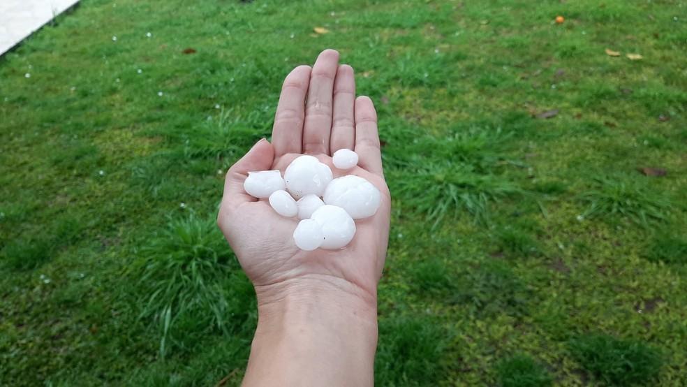 Moradora recolheu pedras de gelo do quintal, em Curitiba — Foto: Arquivo pessoal/Thays Dybas