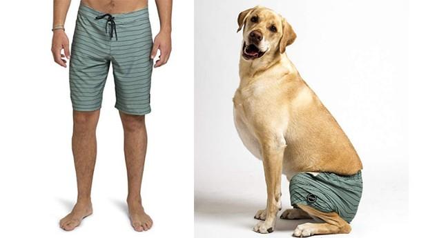 Os calções vêm em cores combinando para o dono e seu cão. (Foto: Divulgação)