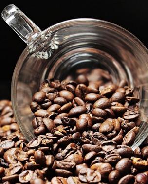 Oito tipos exóticos de café
