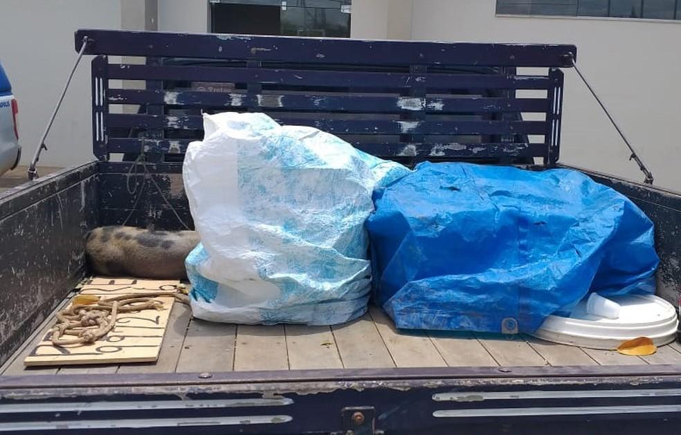 Motorista do caminhão foi ouvido e liberada — Foto: Divulgação/PRE