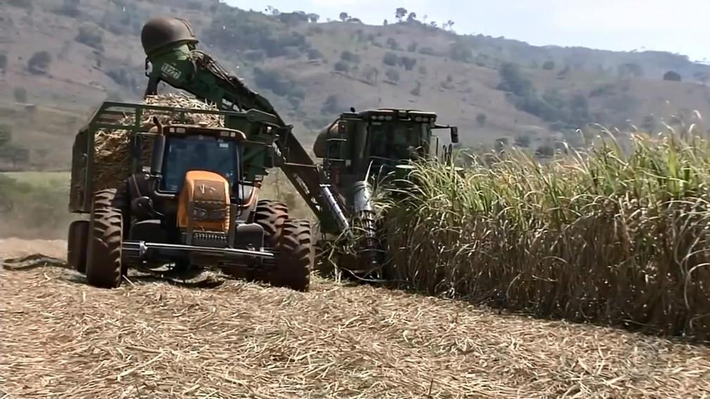 Crescente atividade agrícola impacta os ambientes com fertilizantes e agrotóxicos — Foto: TV TEM/Reprodução