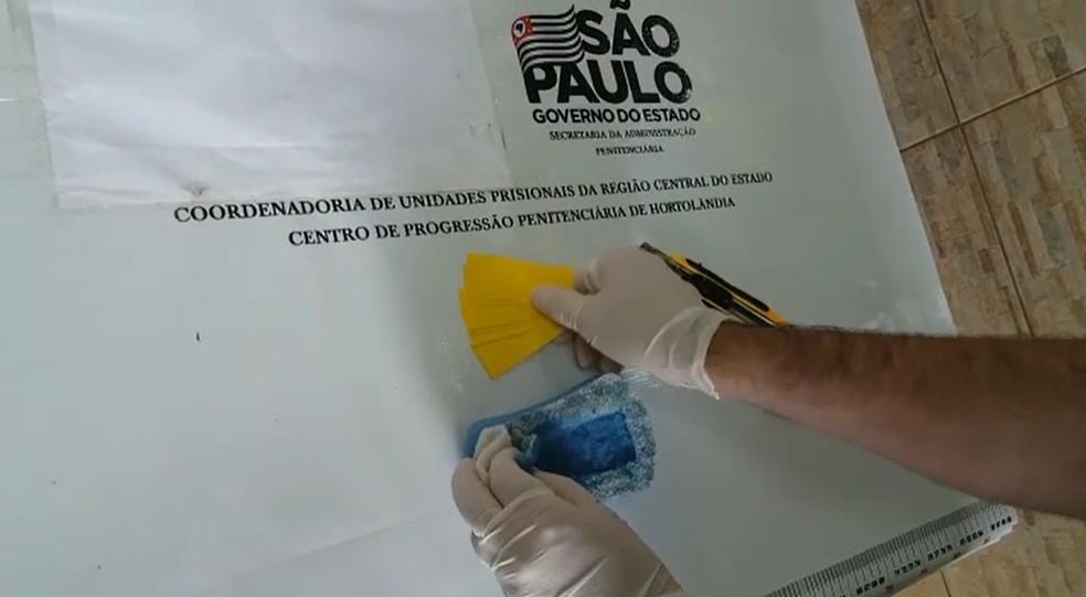 Seis unidades estavam escondidas dentro de uma esponja, diz SAP — Foto: Secretaria de Administração Penitenciária/Divulgação