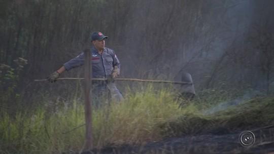 Bombeiros registram mais de 20 queimadas nas últimas 24 horas na região de Itapetininga