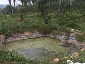 Quadrilha contava com sistema de irrigação especializado (Foto: Divulgação/Polícia Civil)