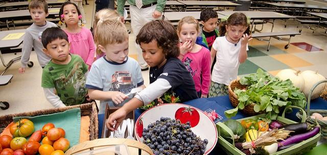 Crianças provando frutas, legumes e verduras: como fazer isso acontecer? (Foto: U.S. Department of Agriculture)