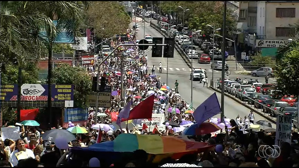 GO - Goiânia: Manifestantes protestam contra Bolsonaro neste sábado (29) — Foto: Reprodução/TV Anhanguera