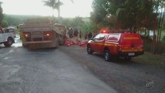 Motorista morre após caminhões baterem de frente na MG-455, em Andradas, MG