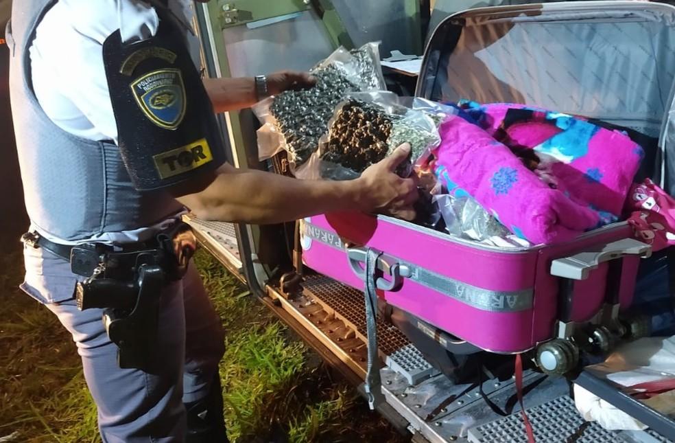 Pacotes de skank estavam dentro da bagagem da mulher — Foto: Polícia Rodoviária