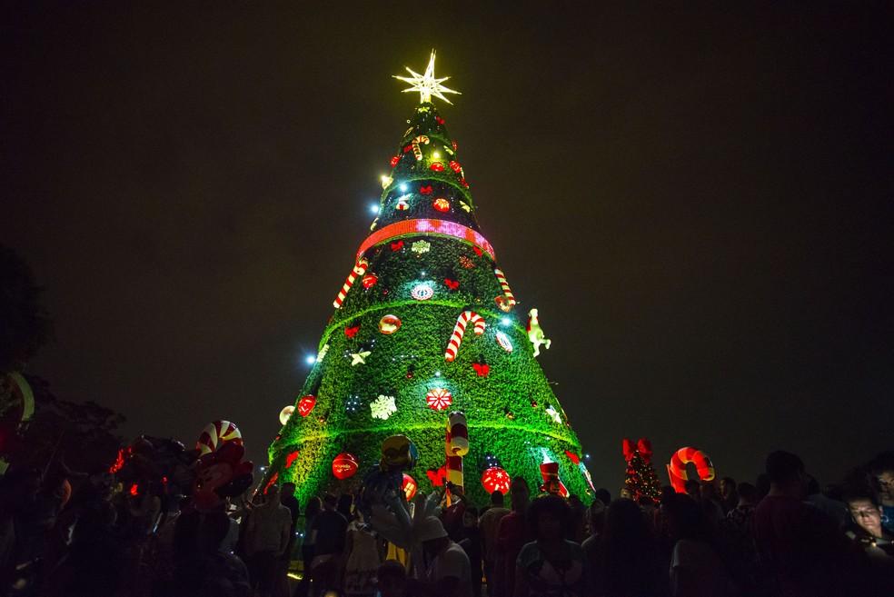 Árvore de Natal do Ibirapuera foi inaugurada com festa neste sábado (Foto: CRIS FAGA/FOX PRESS PHOTO/ESTADÃO CONTEÚDO)
