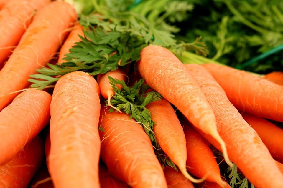 cenoura (Foto: Max Pixel/Creative Commons)