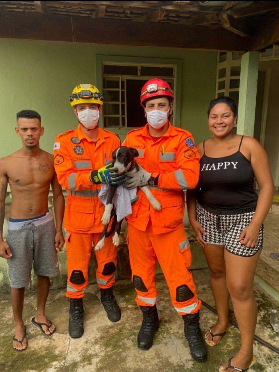 Bombeiros resgatam cão que prendeu cabeça no pilar de uma varanda em Oliveira; veja imagens