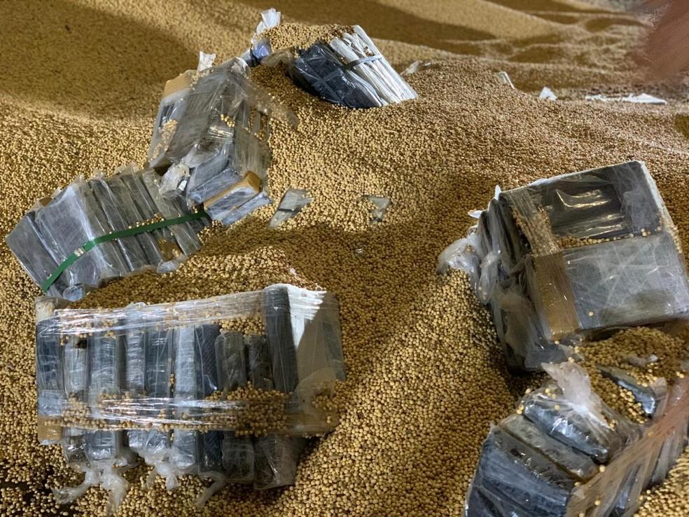 Droga encontrada no porto de Ilhéus estava escondida em meio a carga de soja — Foto: Divulgação/SSP-BA