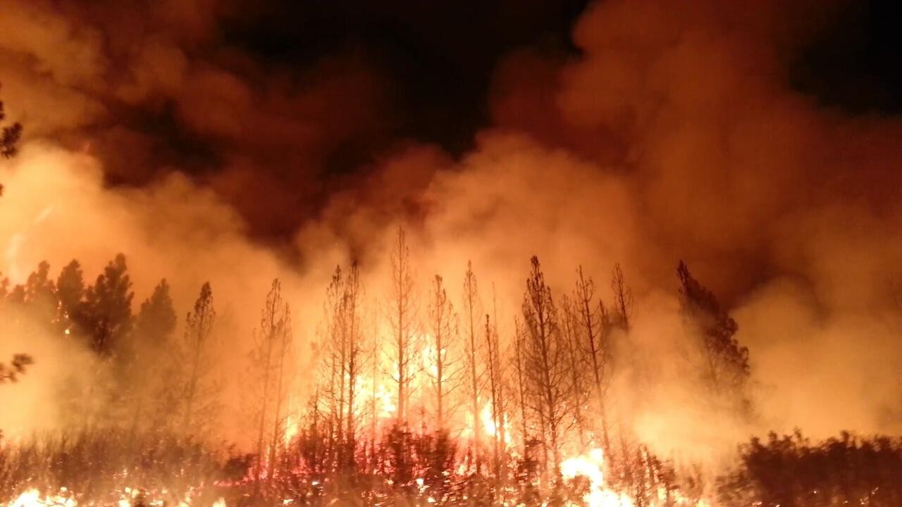Incêndios intensos na Califórnia são consequência do aquecimento global. (Foto: Domínio Público)