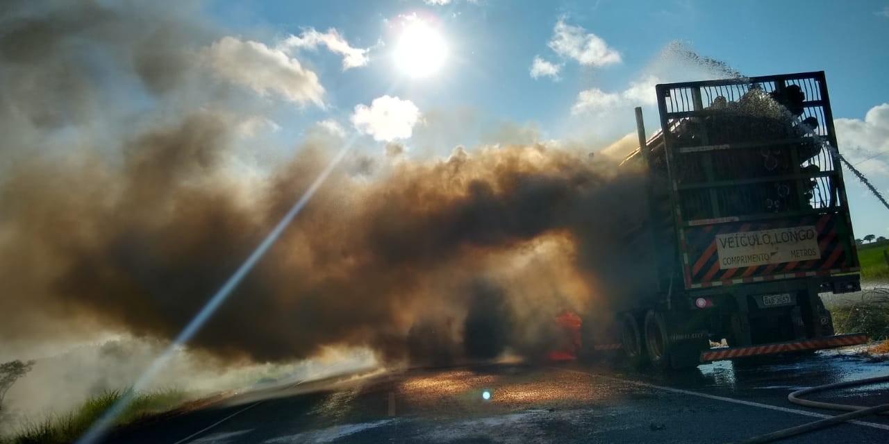 Carreta carregada com eucalipto pega fogo e interdita rodovia federal em Mato Grosso do Sul