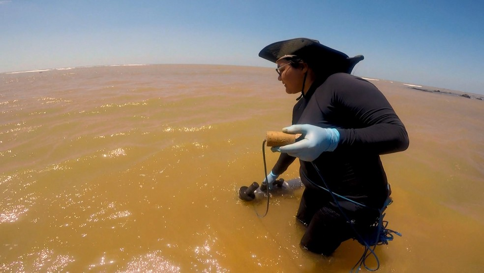 Estudo sendo feito no mar de Regência, em Linhares, no Espírito Santo — Foto: Rafael Zambe/ TV Gazeta