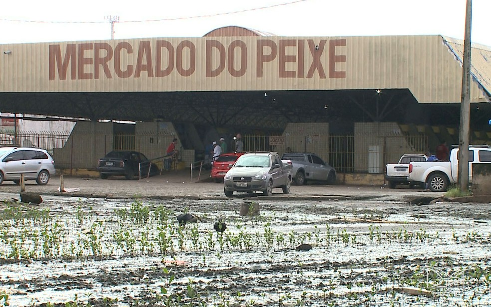 Mercado do Peixe foi inaugurando há 22 anos em São Luís (MA) (Foto: Reprodução/TV Mirante)