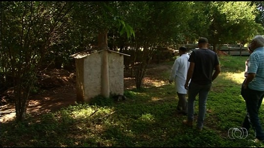 Laudos descartam mortes de 13 macacos por febre amarela, em Goiás
