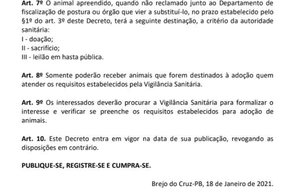 Decreto autoriza sacrifício de animais soltos ou abandonados em Brejo do Cruz, no Sertão da PB