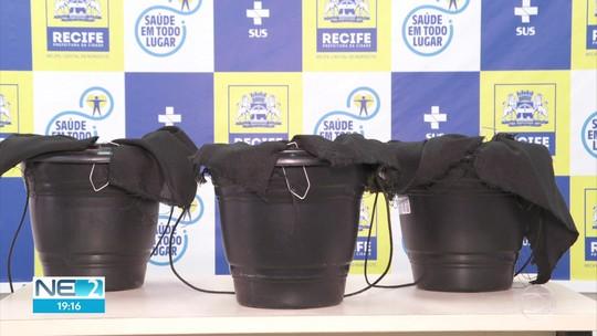 Recife implanta armadilhas para que o mosquito Aedes aegypti leve inseticida por onde for