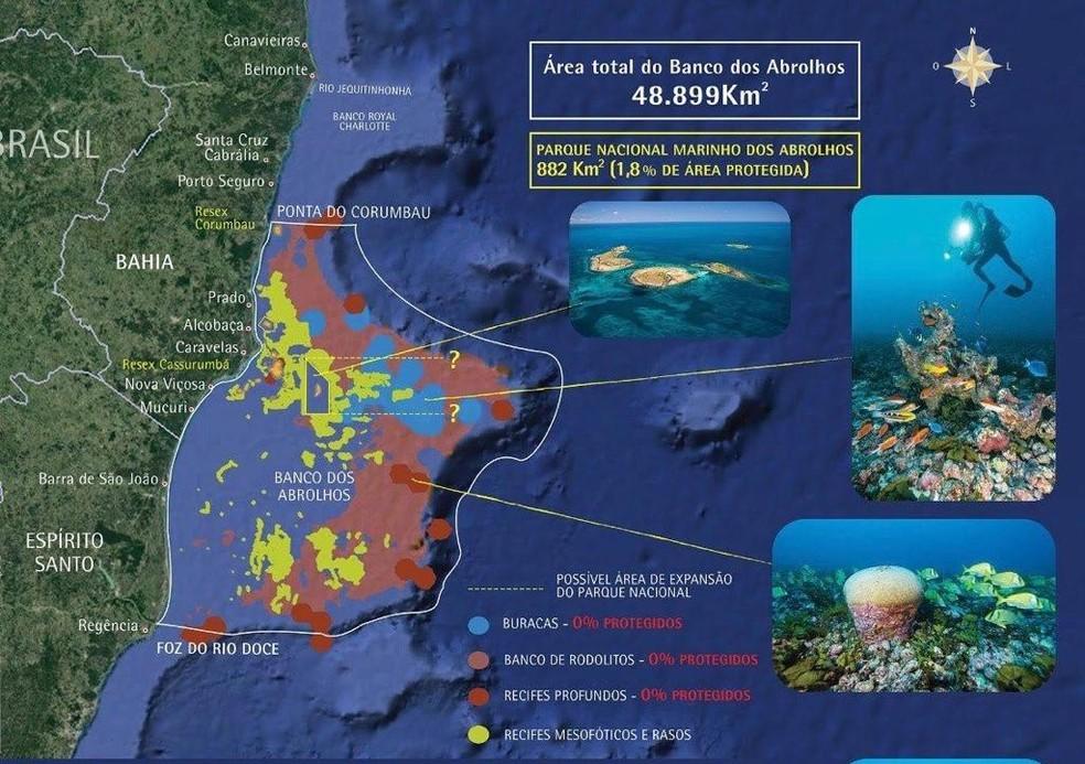 Banco de Abrolhos tem área total de 48.899 km² — Foto: Instituto Baleia Jubarte