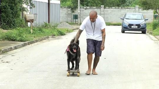 'Plugue' vai contar histórias de cachorros e seus donos neste sábado (17)
