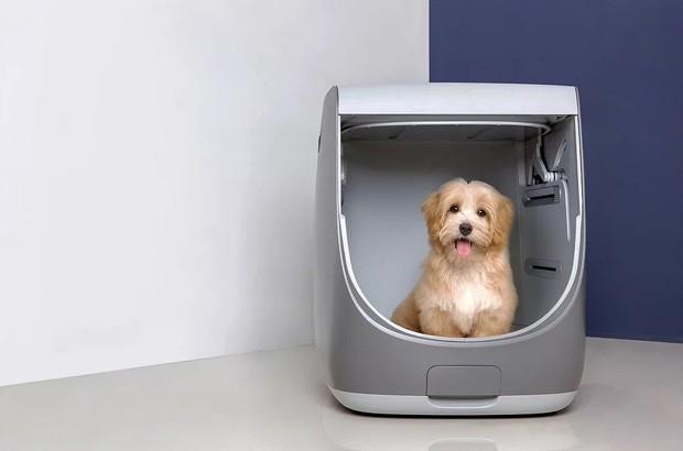 """Designers criam """"máquina de lavar"""" feita para dar banho em cães"""