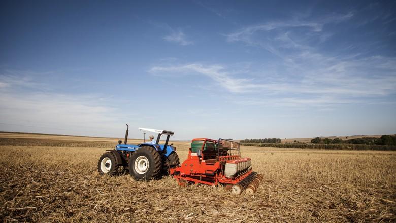 Conab revisa produção de grãos prevê safra 3,4% menor em 2017/18
