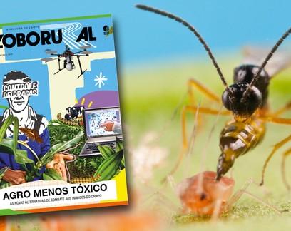Defensivos agrícolas são destaque da edição de abril da Globo Rural