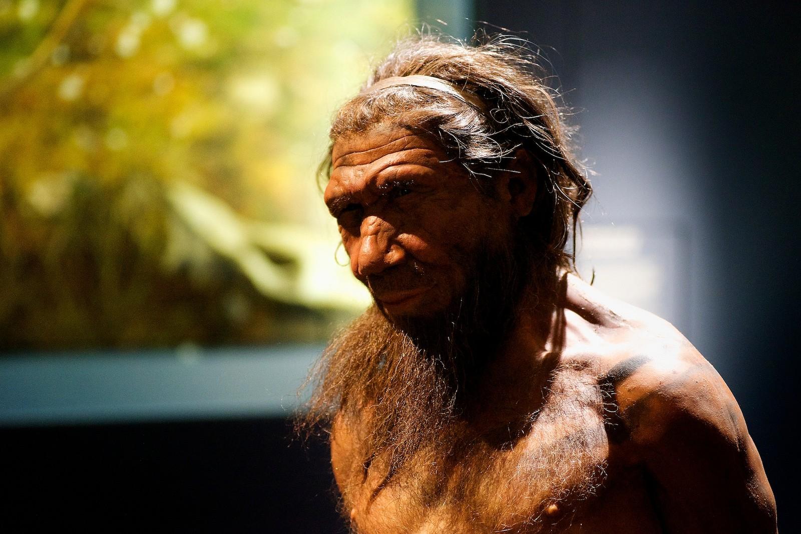 Representação do Homem de Neandertal, exposto no Museu de História Natural, em Londres (Foto: Flickr/Paul Hudson/Creative Commons)
