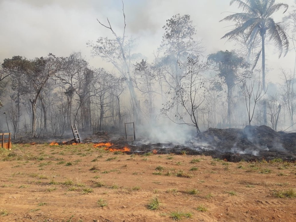 Área de mata é destruída por incêndio em Espigão, RO — Foto: Secretaria Municipal de Meio Ambiente/Divulgação