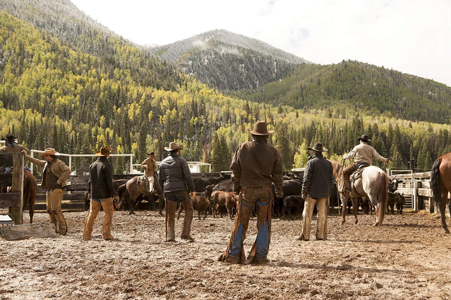 Cena da série Yellowstone (Foto: Divulgação)