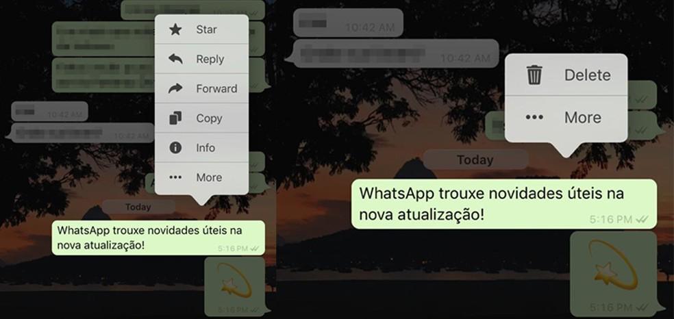 Atualização do WhatsApp para iOS exibe novo menu de contexto para mensagens — Foto: Reprodução/Eduardo Manhães