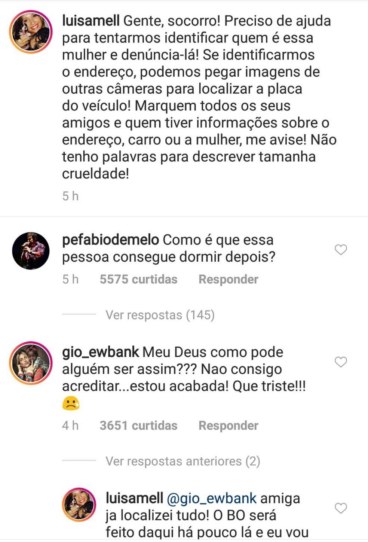 Artistas se pronunciaram sobre o atropelamento dos cachorros em São Luís (Foto: Reprodução/Instagram)