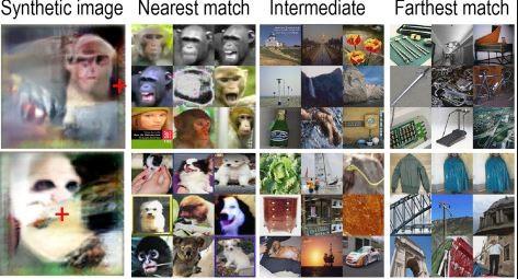Imagens que são muito inusitadas ao olhar humano são construídas com base em fotos reais. O conteúdo é apreciado por macacos durante experimentos científicos para que se possa entender melhor o processo de estimulo cerebral dos primatas.  (Foto: HARVARD MEDICAL SCHOOL)
