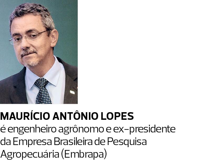 Maurício Antônio Lopes é engenheiro agrônomo e ex-presidente da Empresa Brasileira de Pesquisa Agropecuária (Embrapa) (Foto:  )