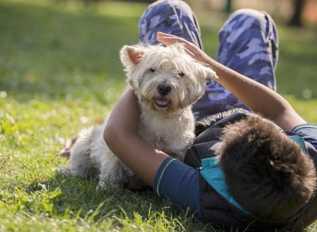 Os cães são os nossos fiéis escudeiros para todos os momentos (Foto: Getty Images)