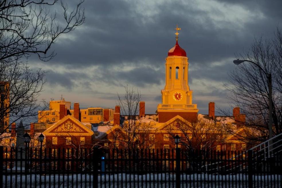 Nathalia precisou fazer uma vaquinha para arrecadar recursos para estudar em Harvard — Foto: Divulgação/Harvard University
